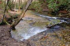 Fightingtown Creek - 40 feet wide here at Creeksong!