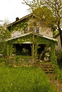 Overgrown abandoned house. Columbus, Ohio.