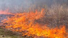 Campomaiornews: Homem morre carbonizado em Campo Maior na zona do ...
