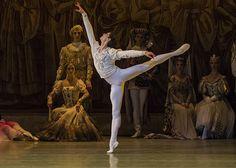 Mariinsky Ballet - Xander Parish as Prince Siegfried in Swan Lake. Photo: Emma Kauldhar