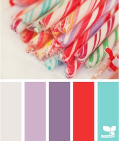 Candied Hues: Turquoise, Grape Purple, Grey, Coral and Periwinkle