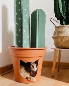 Cactus home decor that doubles as a spot for kitty. Cactus home decor that doubles as a spot for kitty. Diy Cat Toys, Diy Jouet Pour Chat, Carton Diy, Diy Karton, Cat Room, Diy Cardboard, Cardboard Furniture, Cardboard Cat House, Pet Furniture