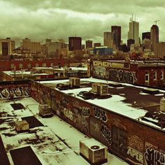 Toronto Rooftops - Flickr Pickr Day 9