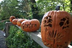 awesome carved pumpkins! my fav Halloween craft