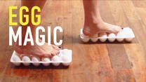 4 Magic Tricks You Can Do With Eggs