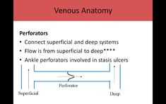 Ultrasound Registry Review - Extremity Venous Vascular Ultrasound, Ultrasound Sonography, Nursing Scrubs, Cardiology, Sounds Good, Teaching Tools, Anatomy, Career, Medicine