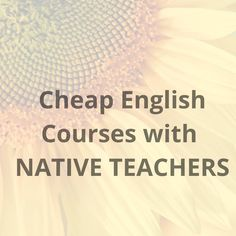 English Course Online, Online Courses, Students, Teacher, Easy, Free, Professor