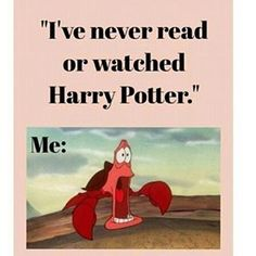 I've you never read or watched Harry Potter? Me: WHAT IS YOU'RE FUCKING PROBLEM?!? Oowh and thanks for 2,1K♥