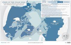 polar bear habitat map; curtosy of polarbearscience.com
