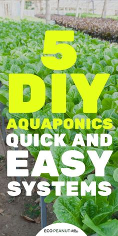 Have you heard of aquaponics? Aquaponics Combines the Growing of Fish and Plants You may grow plants in water and without soil and once one does this together with growing fish you are practicing aquaponics. Aquaponics System, Aquaponics Greenhouse, Hydroponic Gardening, Organic Gardening, Gardening Tips, Aquaponics Plants, Indoor Gardening, Aquaponique Diy, Agriculture