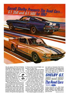 1967 Ford Mustang Shelby GT350 and GT500