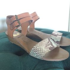 Low Wedge Sandals Snake skin and leather Dolce Vita double ankle strap wedge sandals. Snake skin portion is highlighted with sections of turquoise and dark purple! Leather portion is light brown/caramel colored. Very comfortable and only worn a handful of times. Show no signs of wear. Dolce Vita Shoes Sandals