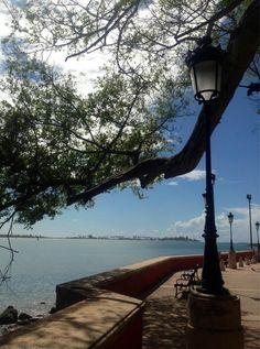 PuertoRicoPUR: Admiring the view... This is El Paseo de la Princesa ...