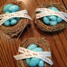 Woodland theme baby shower favors, these would be Cute. Thinking Hobby Lobby has these tiny nests, fill with Easter Blue speckled eggs :)