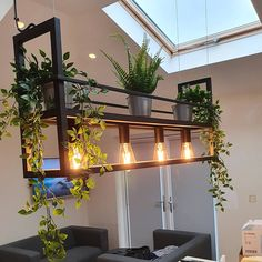 Industrie / Industrial / Vintagelle hanging lamp black with rack - Cage Rack Modern Decor, Lamp Design, Hanging Plants Indoor, Black Lamps, Modern, Modern Hanging Lamp, Industrial Lamp, Lights, Hanging Lamp