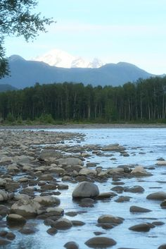 View of Mt. Baker from the Nooksack River- excellent place for a picnic on the rocky shore- I belive the turn off is at Nugents Corner on the Mt. Baker Hwy