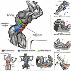 Workout training of abdominal muscles for increased six pack abs. #virileman5
