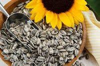 Mudar Curar e Comer: Você sabia que ...As Sementes de Girassol