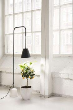 Stylish grow light for plants Grow Lights For Plants, Plant Lighting, Mirror, Stylish, Garden, Modern, Furniture, Home Decor, Google