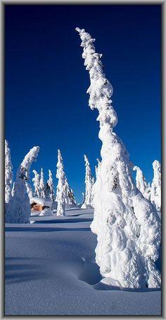 AMAZING WINTER WONDERLAND landscape.NORWAY Hedmark Ringsake rLjøsheim #by Ragnar Brenden -- 500px.com #snow ice