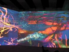 Pipilotti Rist Salmon Cannon, Light Cinema, Pipilotti Rist, Gustave Courbet, Lights Fantastic, Jeff Koons, Rene Magritte, Traditional Paintings, Art And Technology