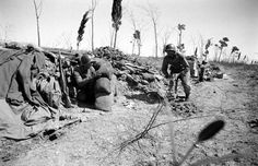 The Allies at Anzio: Rare Photos From WWII's Italian Campaign   LIFE.com