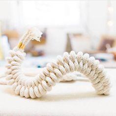 In januari 2016 bedacht kunstenares Windy Chien dat ze een jaar lang elke dag een nieuwe knoop wilde maken. Haar doel: elke dag een experiment met lijn en