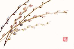 Pussy Willow Branches Original Chinese Brush by 3katdesign on Etsy, $90.00