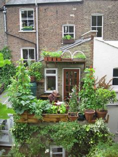 Say you don't have room to garden? Get inspired by these small-space, balcony gardens! http://www.cityplanter.co.uk/practical/grow-your-own/growing-food-in-small-spaces-views-from-the-balcony