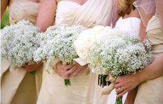 I fiori con tutti i loro significati, i fiori bellissimi nel tuo giorno più bello..tra i capelli, sull'abito...tra le mani anche in seta grazie a Eventi Www.tosettisposa.it #wedding #matrimonio #nozze #abitidasposa2014 #bride #tosetti #tosettisposa