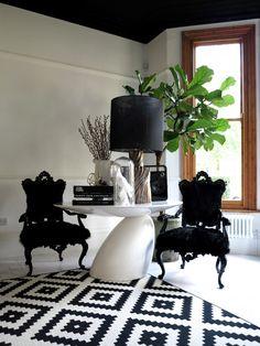 Geometric, french prov chair, black and white, fiddleleaf