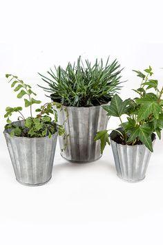 Mothology.com - Set of Three Tin Pots, $9.00 (http://www.mothology.com/set-of-three-tin-pots/)