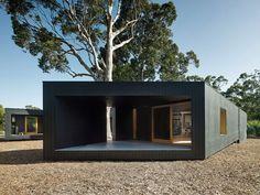 Casa em formato de H abraça eucaliptos no pátio