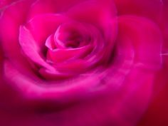 This is another experiment with intentional blur and intentional camera movement for the Digital Photography School monthly challenge. I took many photos of a rose this morning but wasn't really excited by any of the images. As I was packing up my tripod it occurred to me to try intentional camera movement. After a little experimenting I had a few images I was quite happy with. I did this handheld, in macro mode. After focusing on the center of the rose I slightly moved the camera to…