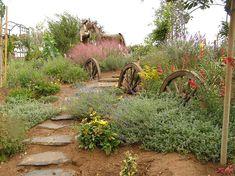 Beautiful landscaping - Southwestern style