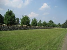 Great stone wall in Middleburg, VA