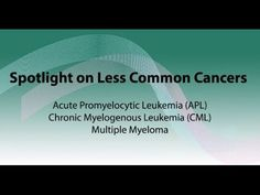 Spotlight on APL, CML, and multiple myeloma