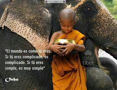 Elephant and Buddhist Monk, Thailand © Lisa Kristine Osho, Citation Gandhi, Little Buddha, Spiritual Love, We Are All Connected, A Course In Miracles, Buddhist Monk, We Are The World, Faith In Humanity