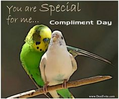 A compliment costs you nothing so feel free to compliment!!!!!!