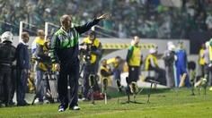 Felipão | Palmeiras