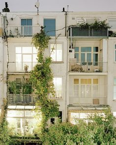 Apartments in Amsterdam | Balchonies, vines, doors surrounded by windows