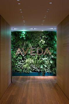 Aveda Milan, the green wall: