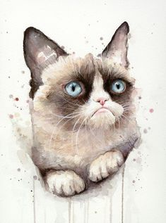 Grumpy Watercolor Cat Art Print. Watercolor Animal Art Print for sale for less than 30dollars. Available on different supports like t-shirts, iPhone&iPod cases, bags, hoodies, curtains, mugs and many more! #CatWatercolor