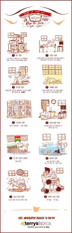 What If You Let A Cat Design Your Home? | #Infographic repinned by @Piktochart