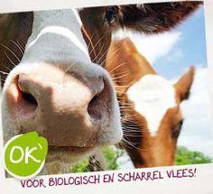 okvlees-biologisch-en-scharrel-vlees. www.okvlees.nl