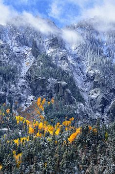 First Fall snow~ Aspen, Colorado Colorado Homes, Colorado Rockies, Aspen Colorado, Beautiful World, Beautiful Places, Forest Service, Rocky Mountain National Park, Natural World, Amazing Nature