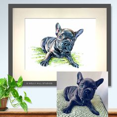 Here is Reggie the famous French Bulldog. You'll find him on Instagram. Some of the darker tones have not been illustrated but it does leave a memorable image of Reggie. What do you think in? http://etsy.me/2juWfFf