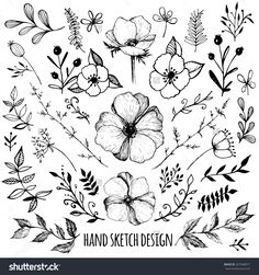 Big Set Of Sketches And Line Doodles - Hand Drawn Design Elements - Isolated Flowers, Leaves, Herbs - For Decoration Prints, Labels, Patterns - Vector Illustration. Coloring Book. - 327048977 : Shutterstock