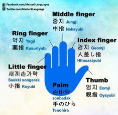 Hands | Vocabulary