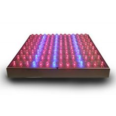 LED Grow Lamp For The Home Hydroponics Growing. LED lights are substantially more energy efficient and instead wasting energy by producing high heat like conventional grow lights, the energy is instead directed to the plant in the form of light. Home Hydroponics, Hydroponics System, Hydroponic Gardening, 1w Led, Grow Lamps, Led Grow Lights, Red And Blue, Outdoor Blanket, Aquaponics System
